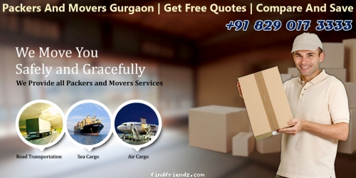 Do Not Have Time Be Dependent Upon Packers And Movers Gurgaon